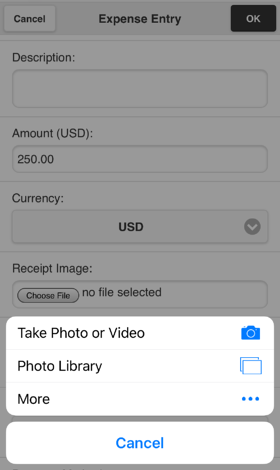 expense entry attach receipt options