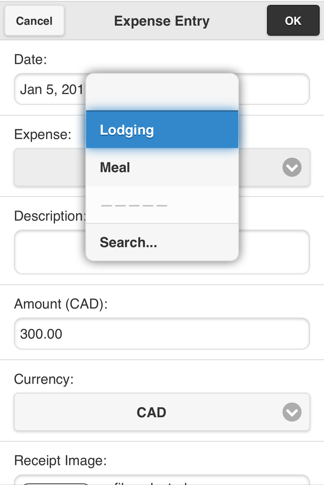 expense entry screen select type.png